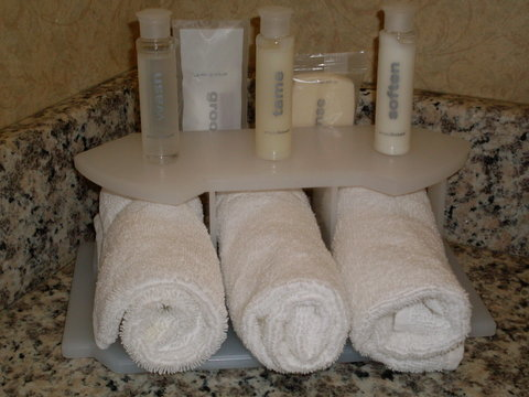 Holiday Inn Express Birmingham East Hotel - Bathroom Amenities