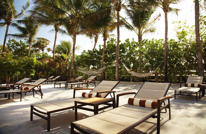 The Palms Hotel & Spa Miami Beach Hotels