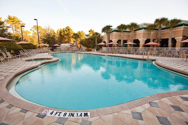Crowne Plaza Hotel Orlando-Universal 游泳池视图