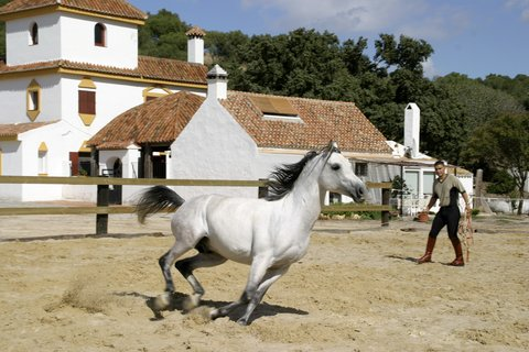 Fairplaygolf Hotel And Spa - Fairplay Horse Stables