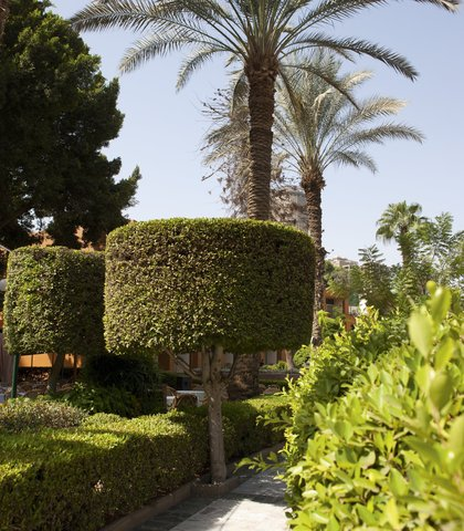فندق ماريوت القاهرة و كازينو عمر الخيام - Garden Walkway