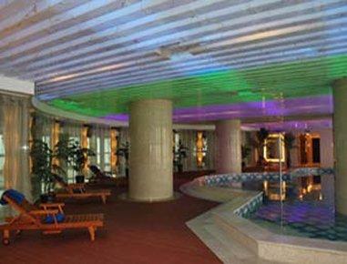 大同金地豪生大酒店 - Swimming Pool