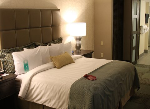 Quality Suites Convention Center Hotel - Guest Room