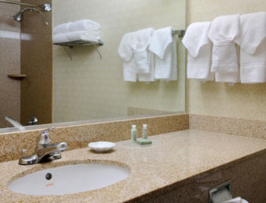 Baymont Inn and Suites Houston- Sam Houston Parkway Szobakilátás