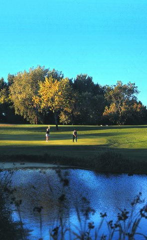 Arrowwood Resort - Golf - Reeds