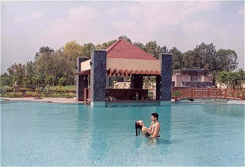 Uppal's Orchid - an Ecotel Hotel - Swimming Pool