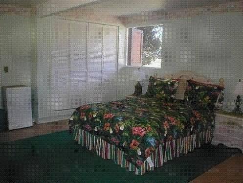 Macadamia Meadows Farm Bed & Breakfast - Naalehu, HI