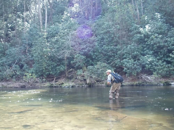 Dancing Bear Appalachian Bistro - Townsend, TN