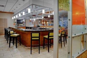Bar - Hilton Hotel Birmingham Perimeter Park