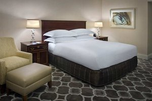 Room - Hilton Greenville & Towers Hotel