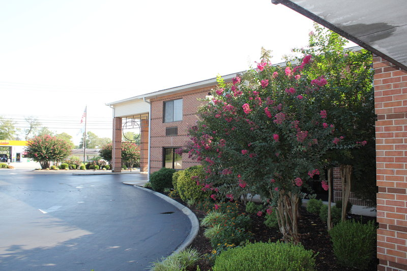 BEST WESTERN Celebration Inn & Suites - Shelbyville, TN