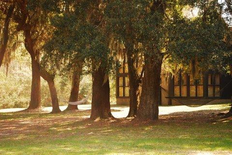 在米德尔顿广场酒店 - Relax under an Oak Tree