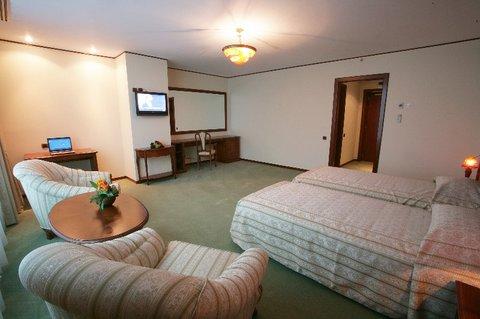 Alexander Hotel Bucharest - Superior Twin