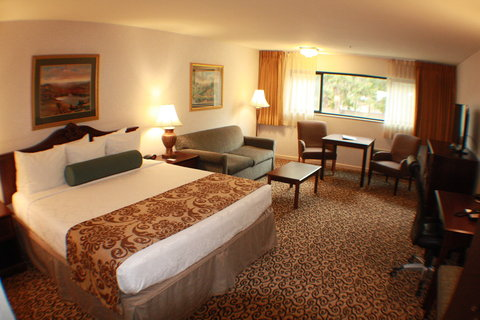 Best Western Plus Inn At The Vines - Executive King Guest Room