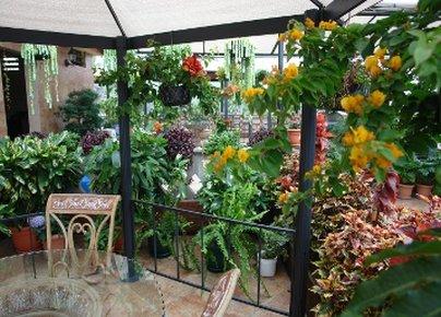 Howard Johnson Inn Guatemala City - Terrace View