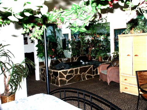 Airport Settle Inn - Jungle Suite
