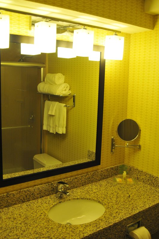 Holiday Inn AIRPORT WEST EARTH CITY - Bridgeton, MO