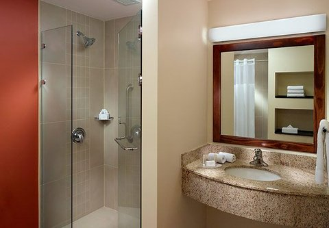 Courtyard by Marriott San Jose Airport Alajuela - Master Suite Bathroom