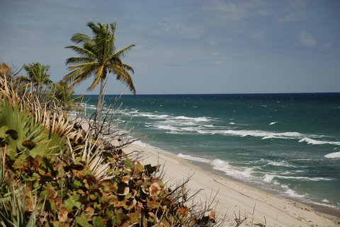 Embassy Suites Fort Lauderdale - 17th Street - Beach Peace