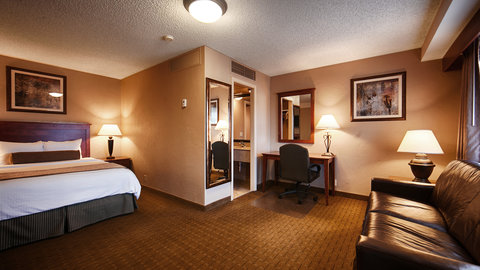 BEST WESTERN Vista Inn at the Airport - Guest Room