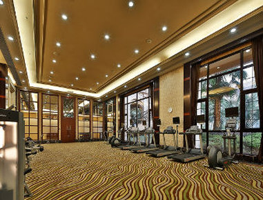 Howard Johnson Agile Plaza Chengdu - Fitness Room