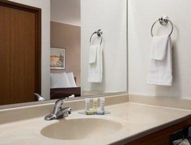 Elko NV Travelodge Hotel - Restroom