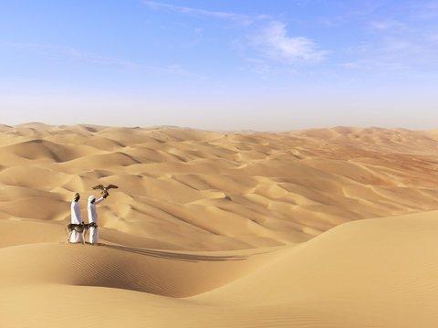 أنتارا قصر السراب منتجع الصحراء - Falcon and Saluki Show