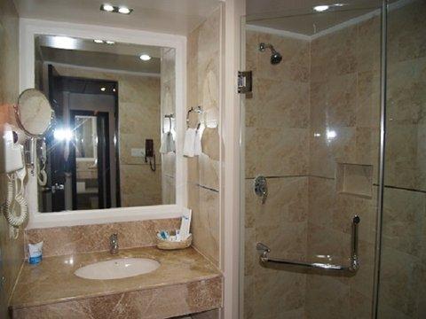 Hotel Agrabad - DLx Bathroom