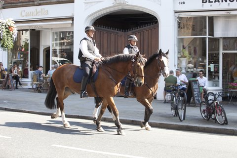 Dorsett Shepherds Bush Hotel - Mounted Police London