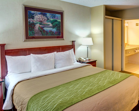Comfort Inn & Suites Near Univ. of Maryland - MDNK