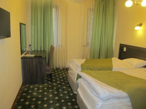 Golden Palace Hotel - Standard twin room