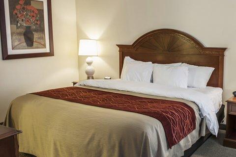 Comfort Inn & Suites Columbus - INSnk