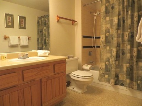 Crested Butte Mountain Resort - Bathroom