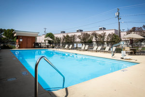 Pool - Clarion Inn & Suites Greenville