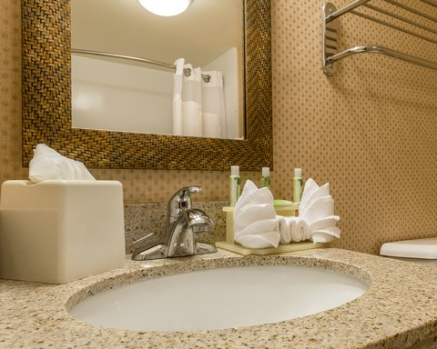 Holiday Inn Express ATLANTA AIRPORT-COLLEGE PARK - ADA Handicapped accessible Guest Bath vanity