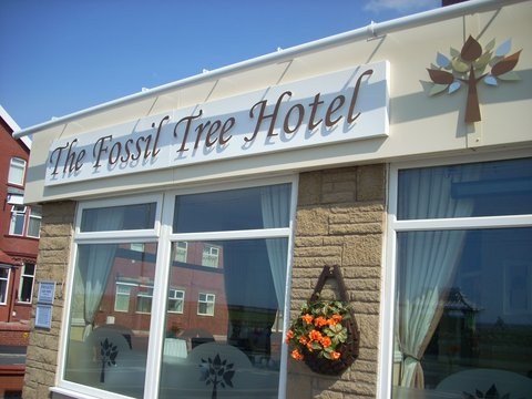 The Fossil Tree Hotel - Hotel Front