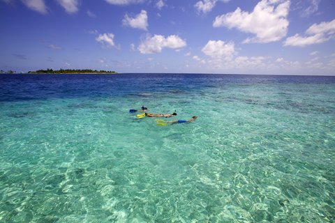 Six Senses Laamu - Snorkeling