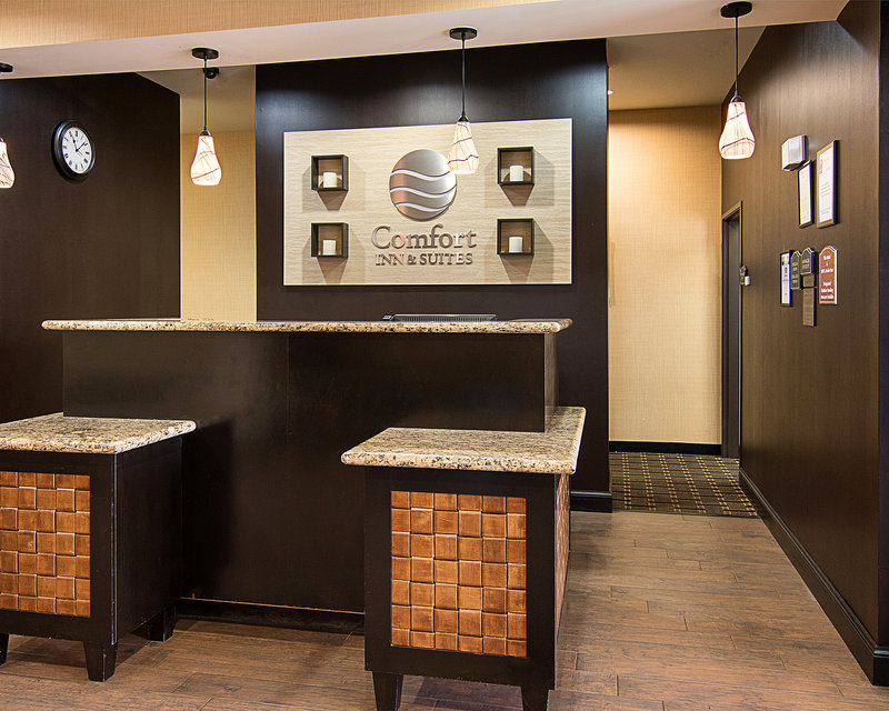 Comfort Inn & Suites - Paris, TX