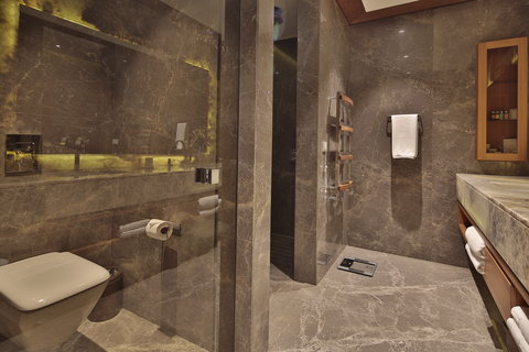 Ariana Sustainable Luxury Lodge - Interior