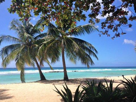 Sugar Bay Barbados - Wet and Wild Watersports
