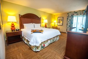 Room - Hampton Inn & Suites Isla Verde San Juan