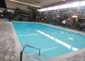 Pool - Rodeway Inn Fort Collins
