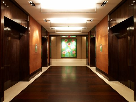 انتركوتيننتال جنيف - Elevator Lobby at Ground Floor