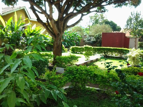 Gorilla African Guest House - Dormitory 4 beds