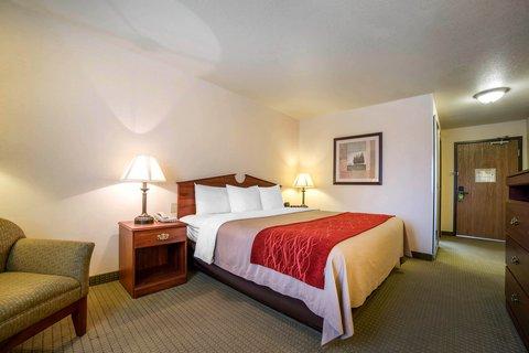 Comfort Inn Buffalo - Guest Room