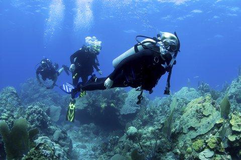 St. James Club All Inclusive Hotel - Antigua Scuba Excursion