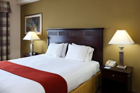 Holiday Inn Express & Suites GADSDEN W-NEAR ATTALLA - King Bed Guest Room