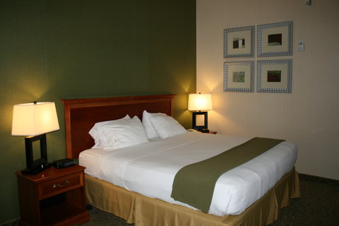 Holiday Inn Express & Suites HAGERSTOWN - 1 King Bedded Suite
