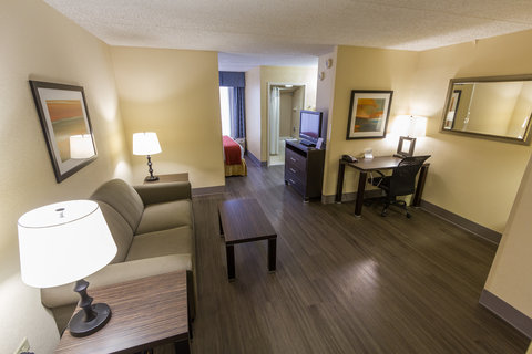 Holiday Inn Express & Suites AUSTIN AIRPORT - Deluxe Room