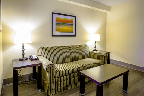 Holiday Inn Express & Suites AUSTIN AIRPORT - Sleeper Sofa